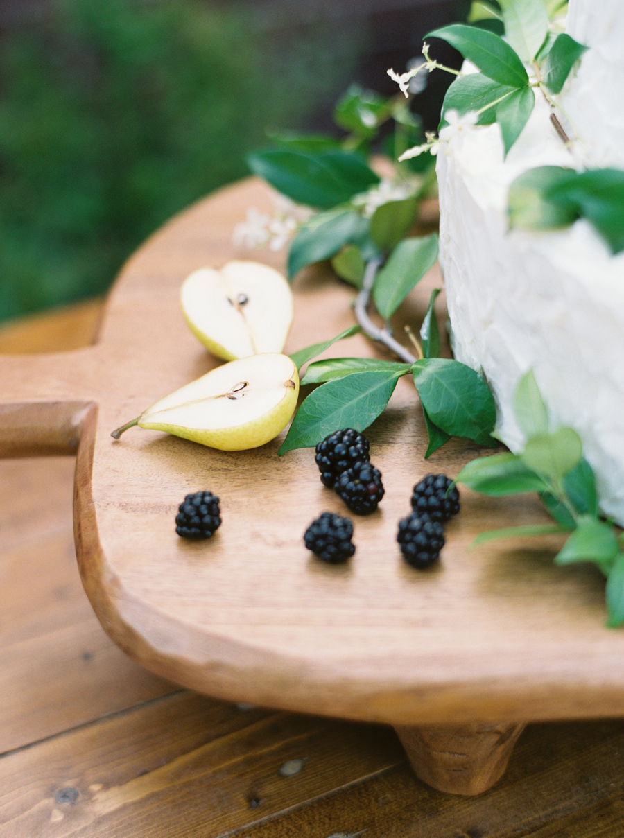 Jared and Maegan:  Blueberry and Lilac Hill Country Wedding